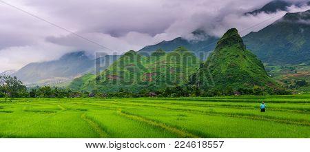 Panorama scene of rice fields and terrace on daylight sunshade at Sapa, Vietnam.