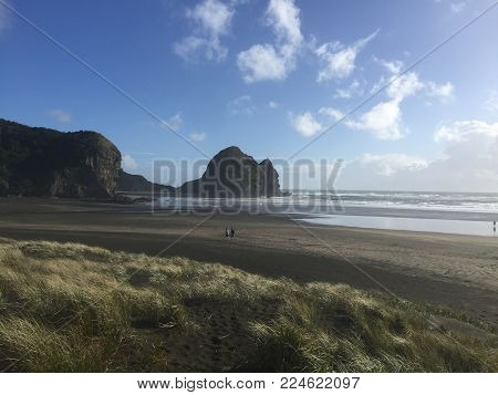 Walking Along The Beach At Piha In New Zealand.