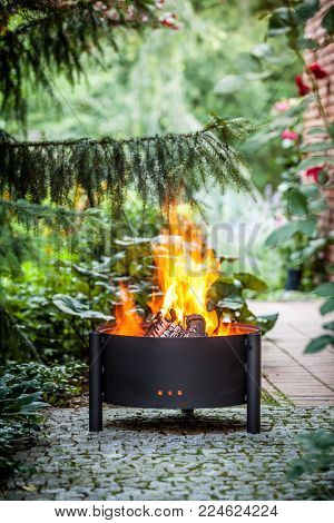 Fire pits in the summer garden.