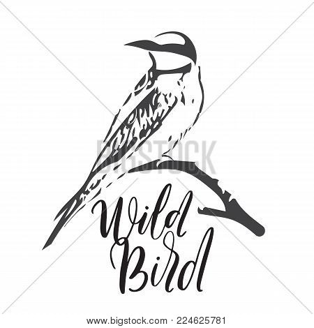 Vector illustration of Wild Bird. Bee-Eater on dry branch.