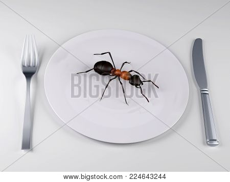 Insect food on a plate, the future food concepts, 3d illustration
