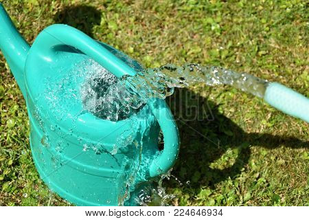 The water hose flows from the garden hose into the watering can. Wasteful wasting water.