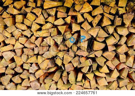 Wood piled up after felling and used for heating, cooking and the like after drying