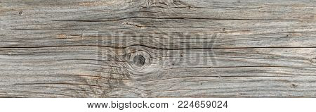 Wide panorama banner in a full frame texture of old cracked dried wood with knots and woodgrain