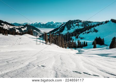 Pristine white winter snow in an alpine landscape on a steep slope into a forested mountain valley with distant hikers and snow-capped peaks