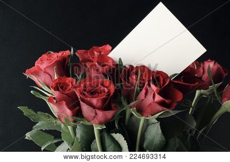 A bunch of red roses in an upright grouping with blank white message card at eye level. Black background.