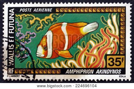 WALLIS AND FUTUNA ISLANDS - CIRCA 1978: a stamp printed in Wallis and Futuna shows the Barrier Reef anemone fish, amphiprion akindynos, fish,circa 1978