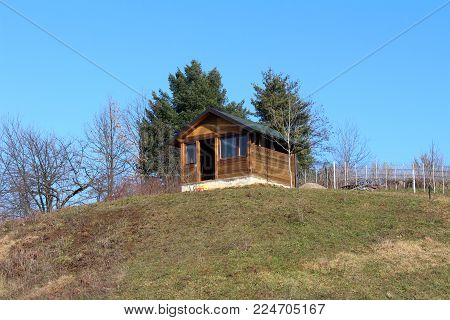 Unfinished small wood cabin on top of the hill surrounded with partially dried grass, trees without leaves, vineyard and tall pines on cold winter day