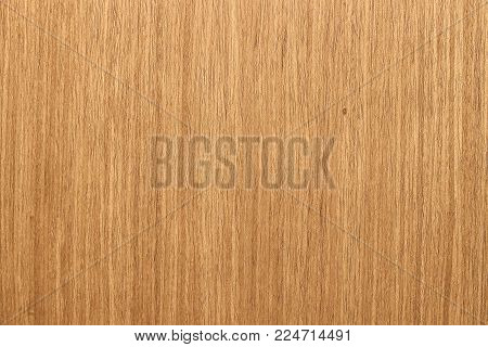 Sheet of veneer, lacquered oak. Natural wood pattern as a background or seamless texture.  Repair, design concept.