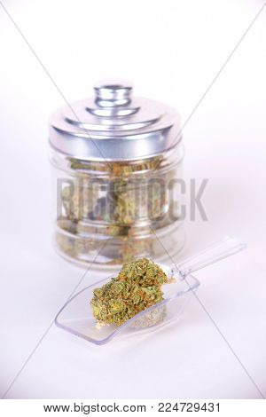 Detail of cannabis buds (sour tangie strain) on glass jar isolated on white - medical marijuana dispensary concept