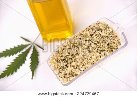 Detail of scooper with a bunch of hulled edible hemp seeds, regarded as a superfood for its nutritional value
