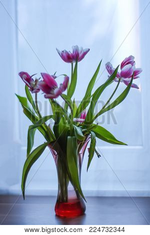 Bouquet of bright beautiful spring tulip flowers.