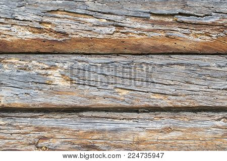 old wooden background of three rotten oak logs with twigs, front view