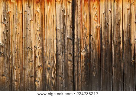 Full screen vertical grunge orange brown wood plank wall texture background daytime outdoor photo