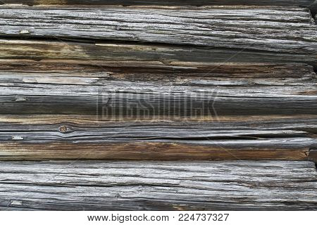 old wooden background of four rotten oak logs with twigs, front view