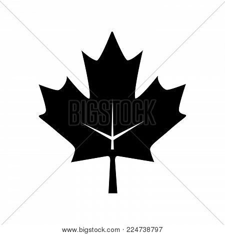 Maple Leaf Icon Isolated On White Background. Maple Leaf Icon Modern Symbol For Graphic And Web Desi
