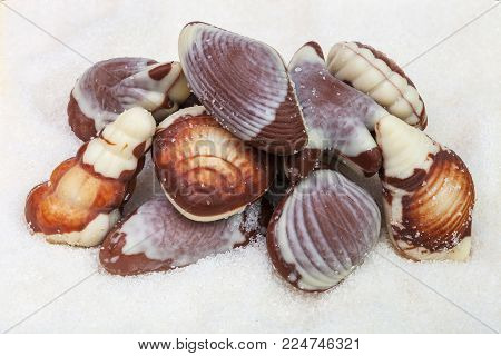 Chocolate candies in the form of seashells against the backdrop of granulated sugar