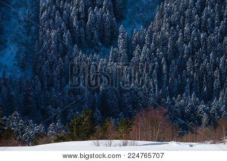 Ski resort Dombay at winter, Karachay-Cherkessia, Russia