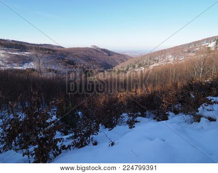 Snow covered woodland at Beskid Mountains range landscape in Jaworze near city of Bielsko-Biala in Poland with clear blue sky in 2016 cold sunny winter day, Europe on December.