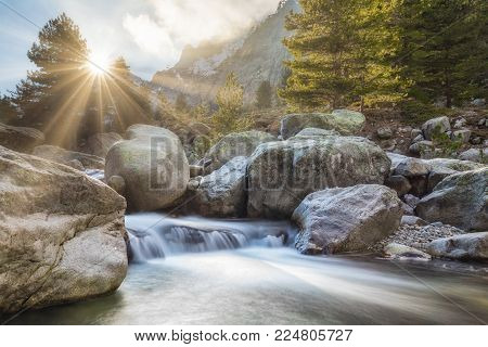 Bright sunshine filtering through a pine tree and blue sky above the crystal clear water cascading over boulders through the forest at Restonica near Corte in Corsica