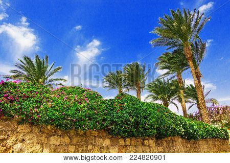 Brick wall with flowers, palms and blue sky on a hot day