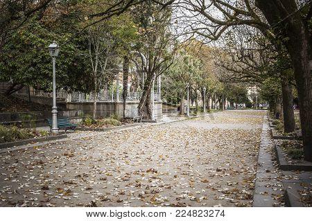 SANTIAGO DE COMPOSTELA,SPAIN-NOVEMBER 21,2017:Garden view promenade, autumn day in park,parque alameda.Santiago de Compostela,Spain.