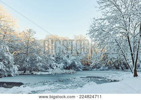 Frozen pond in winter in England with sunlight filtering through the trees