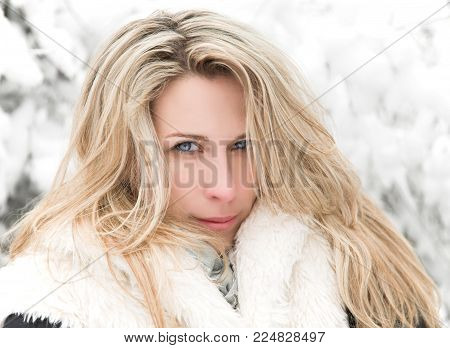 Beautiful long hair blonde woman portrait, winter, snow covered trees background