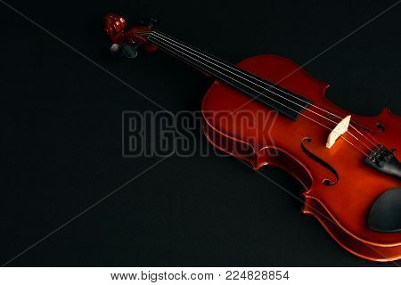 Brown classical violin. Four string musical instrument violin isolated on black background with copy space, close-up. Violin strings and bridge, top view
