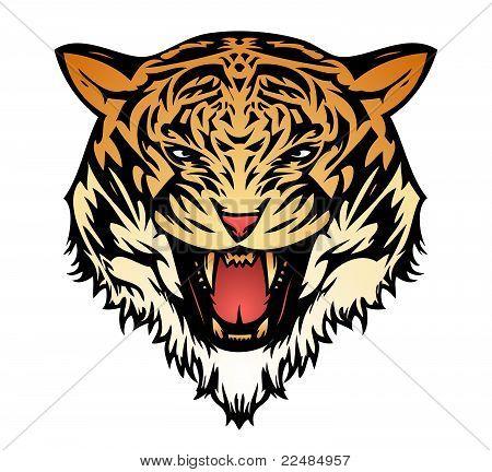 Tiger aggressive coloured (vector)
