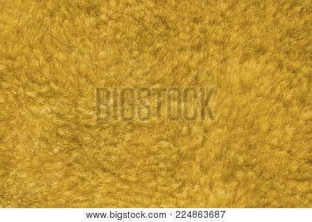 yellow shaggy skin of an animal closeup texture, Fur Texture.