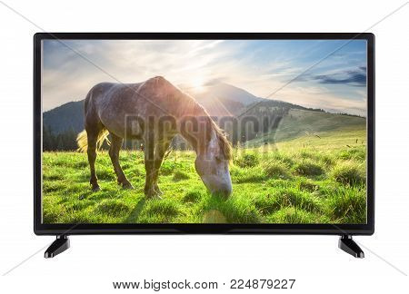 Black High Definition TV with picture of horse on the grass of the mountains