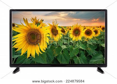 Flat black TV with  picture of  field of sunflowers on the screen