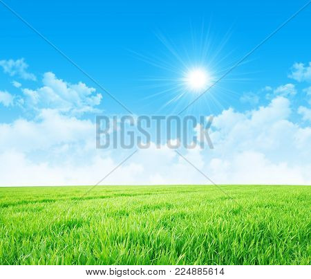 Green meadow on a beautiful spring morning, white clouds, blue sky and sun rising