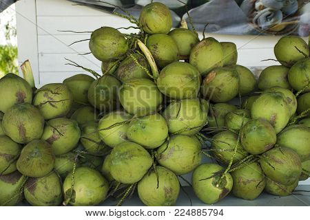 Coconut cluster fruits for sale travelers people in Laem Phak Bia in Phetchaburi, Thailand