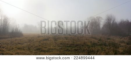 An early morning foggy meadow in rural Central New Jersey.