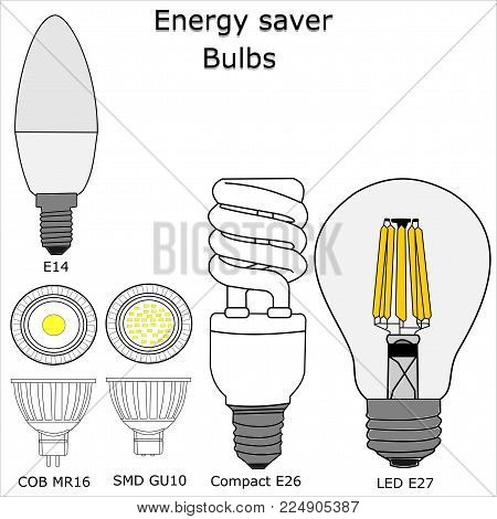 Energy saver bulbs vector with white isolated background