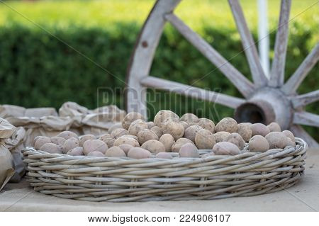 Bunch of Potatoes in Wicker Tray and Big Wooden Chariot s Wheel in background.
