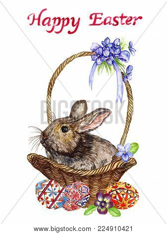 Easter bunny in basket with eggs with traditional painting, chick and spring flowers: pansies and violets, design for card