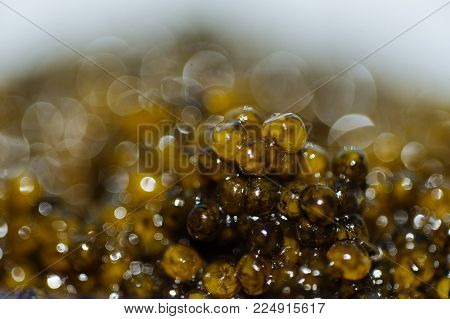 Delicious and very expensive delicatessen caviar of sturgeon. Black caviar close-up.  Soft focus and beautiful bokeh.