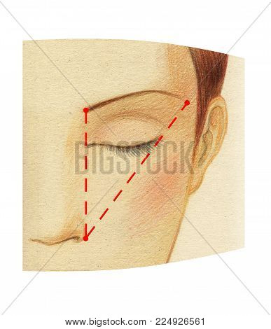 Fragment of a woman's face with close eyes. The scheme of constructing the ideal length of the eyebrow.