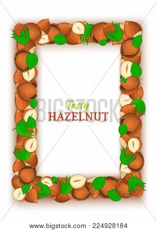 Vertical Rectangle colored frame composed of delicious of hazelnut. Vector card illustration. Filbert nuts frame, walnut fruit in the shell, whole, shelled, leaves for packaging design of food