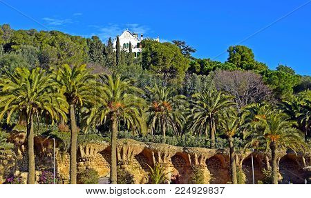 viaduct, aqueduct, bridge, park, guell park, vegetation, architect, antonio gaudí, architecture, monuments, architectonic interest, trees, palm trees, architectural details,