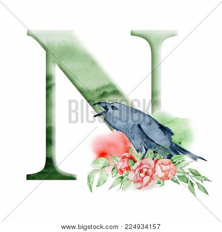 Floral watercolor alphabet. Monogram initial letter N design with hand drawn Raven, crow and flower peonies bouquet for wedding invitation, cards, logos