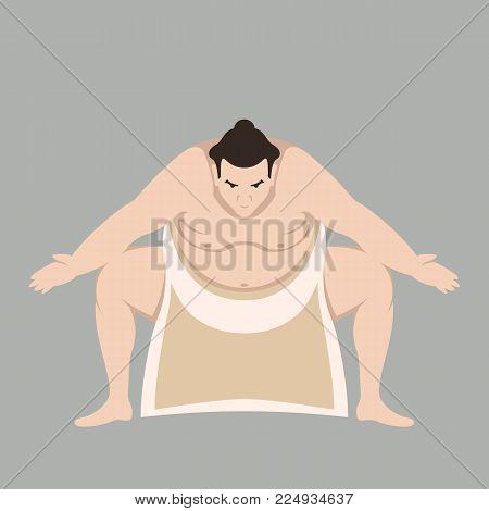 Sumo wrestler men vector illustration flat style front view