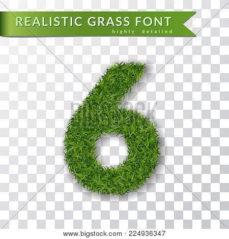 Grass number six. Green number six, isolated on white transparent background. Green grass 3D 6, fresh symbol of nature, plant lawn, summer. Grass texture spring font. Eco design Vector illustration
