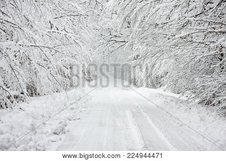 Winter scene of a snow-bound road with branches leaning  under the weight