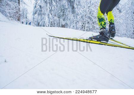 Nordic Ski, Professional Race, White Nature, Edit Space