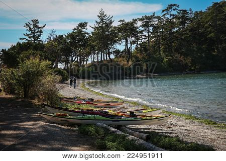 Sucia Island Marine State Park, Puget Sound, Washington State, USA - June 13, 2017- several colorful kayaks pulled up on a curving beach that two people are strolling on, towards pine trees.