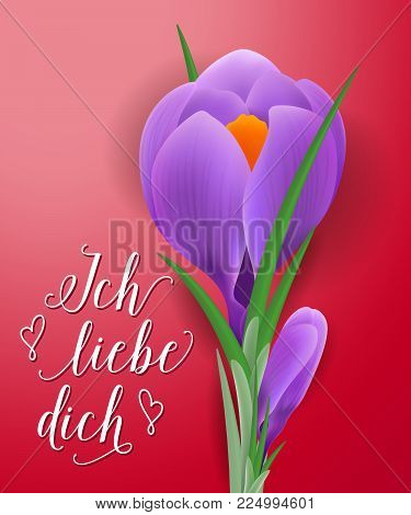 Ich liebe dich lettering with violet snowdrop and hearts on red background. Calligraphic inscription can be used for greeting cards, romantic messages, posters.